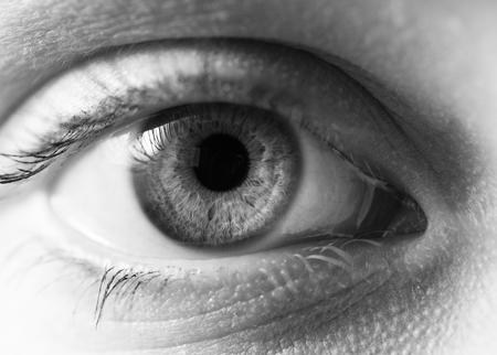 Macro shot of female human eye in black and white toned. Stock Photo