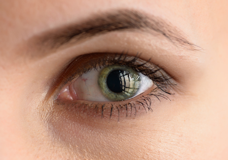 Human green eye with reflection. Macro shot.