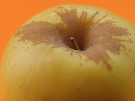 Apple on orange background. Selective focus with shallow depth of field.