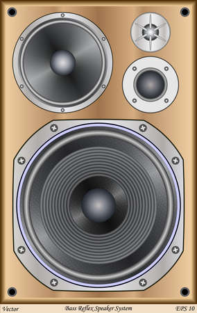 hi fi system: Bass Reflex Speaker System Illustration