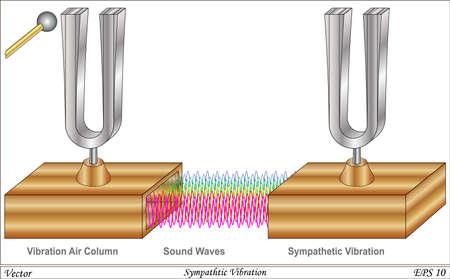 oscillation: Diapasones en Sympathy - Como uno vibra tambi�n lo hace el otro