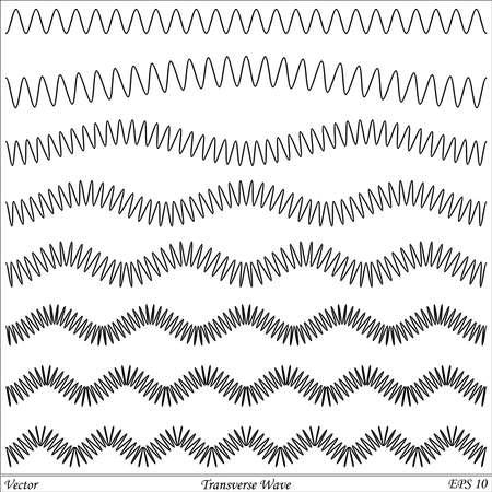 oscillation: Transversal Wave