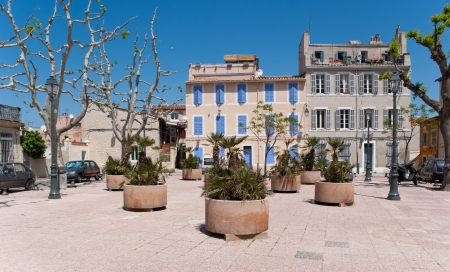 The square in the old district of Marseille is decorated with palms in big pots photo