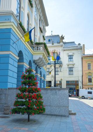chernivtsi: CHERNIVTSI, UKRAINE - JUNE 20, 2014: The flower decoration next to the entrance of the Town Hall, on June 20, 2014.