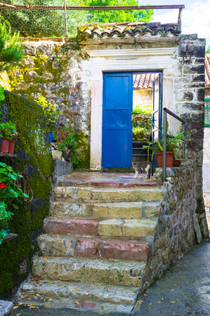 porches: The small courtyard with the stairs, blue door and the kitten, going home, Kotor, Montenegro. Stock Photo