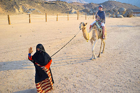 little girl sitting: HURGHADA, EGYPT - OCTOBER 5, 2014: The tourist feels happy during the camel ride and the young girl-cameleer waves her hand to the friends, on October 5 in Hurghada.