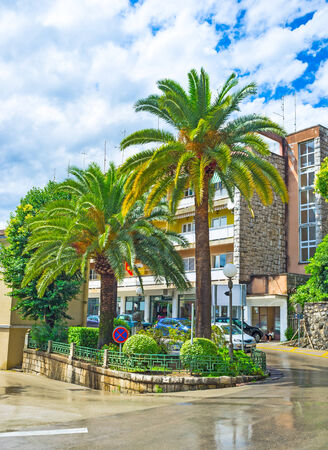 The modern streets of Herceg Novi decorated with plants and small flower beds, Montenegro. photo