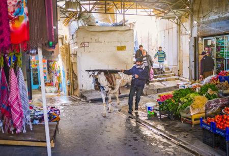 mesopotamian: MARDIN, TURKEY - JANUARY 14, 2015: The donkey is popular for transportation different goods, on January 14 in Mardin.