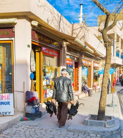 mesopotamian: MARDIN, TURKEY - JANUARY 14, 2015: The farmer carries roosters to the market, on January 14 in Mardin.