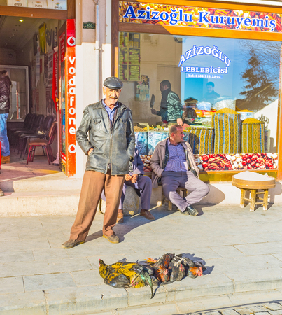 mesopotamian: MARDIN, TURKEY - JANUARY 14, 2015: The turkish farmer with the roosters for sale, on January 14 in Mardin.