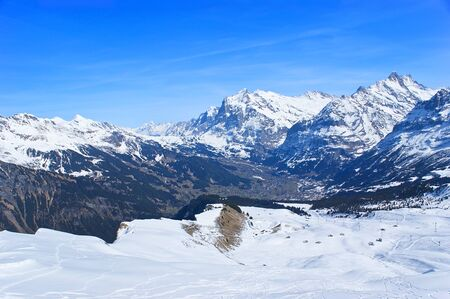 ski runs: The snowbound Grindelwald valley with the numerous ski runs looks great from the Mannlichen mountain top, Switzerland.