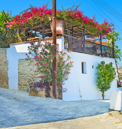 maroni: The beautiful terrace on the houses roof decorated with shady flower bushes, Maroni, Cyprus.