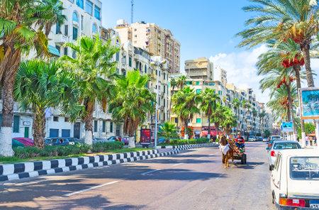 alexandria egypt: ALEXANDRIA, EGYPT - OCTOBER 11, 2014: The main city promenade with the numerous green palms, on October 11 in Alexandria.