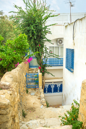 rampart: The old rampart surrounds the Medina of Hammamet and serves as the area for the tiny gardens, Tunisia.