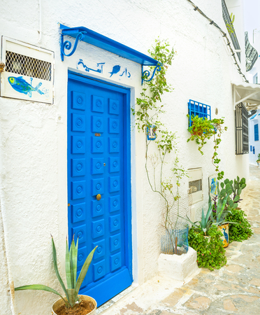 slums: HAMMAMET, TUNISIA - SEPTEMBER 6, 2015: The bright color door and flower s in pots are the traditional exterior decorations in old arabic towns, on September 6 in Hammamet.
