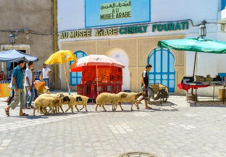 kairouan: KAIROUAN, TUNISIA - AUGUST 30, 2015: The shepherds lead the sheep across the old town market, on August 30 in Kairouan. Editorial