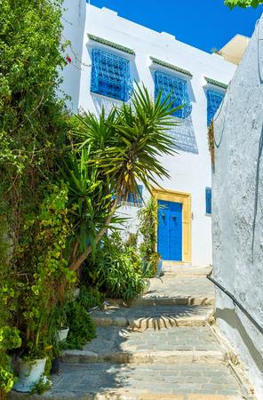 sidi bou said: The narrow streets of Sidi Bou Said consist of beautiful white houses and lush tropic gardens, Tunisia.