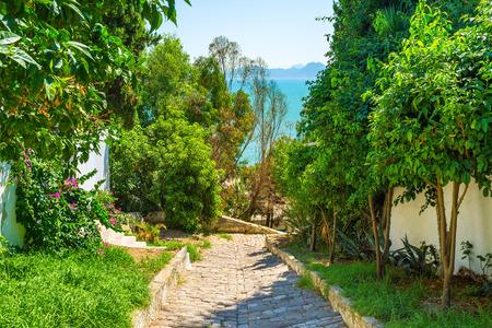 sidi bou said: The scenic village has many lush gardens with shady trees and colorful flowers, Sidi Bou Said, Tunisia.