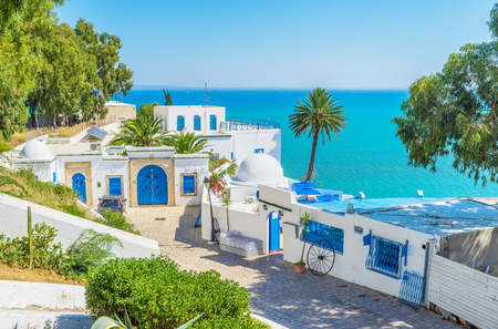 One of the most beautiful views in the mountain village of Sidi Bou Said, Tunisia.