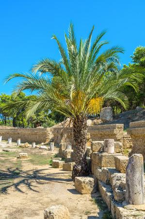 amphitheatre: The Punic amphitheatre located in former Carthage, Tunisia. Stock Photo