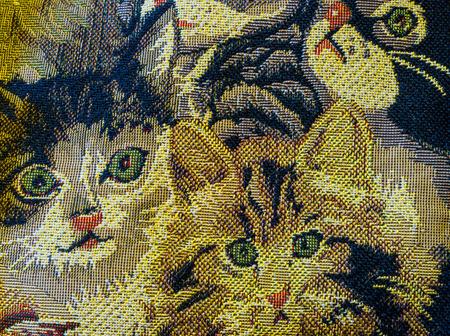 キャンバスは、緑色の目の子猫で飾られました。