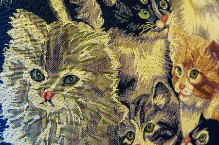 The cute kittens look from the gobelin.