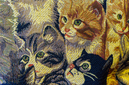 rug weaving: The canvas with many curious kittens.