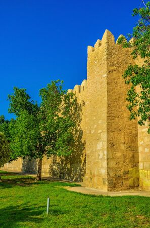 boast: The old walls surrounding Medina boast many square towers with battlements on their tops, Sousse, Tunisia.