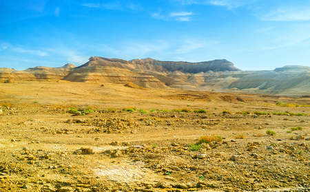 The Negev desert valley with the huge mountain on the background, Israel.