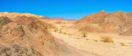 The dry river valley in desert Eilat mountains serves as the tourist footpath with poor vegetation, Israel.