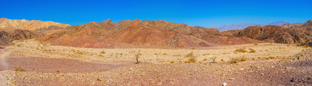 The dry yellow riverbed surrounded by red slopes in Eilat mountains, Israel. Stock Photo