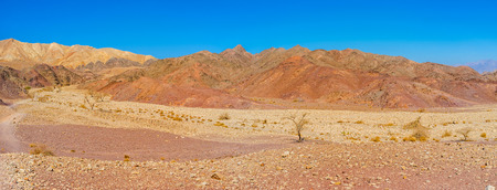 The dry desert region of Eilat mountains with poor vegetation and scenic colored landscape, Israel.
