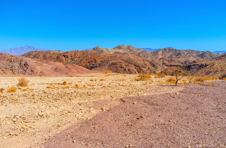 The walk along the dry riverbed in Negev desert, Eilat, Israel.