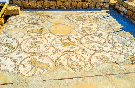mosaic floor: The ancient floor mosaic in archaeological site decorated with images of wild animals, surrounded by grape vines  in Caesaria.