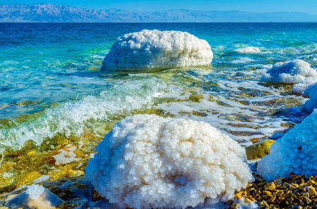 gedi: The shore of Dead Sea with the stones covered with salt crystals, Ein Gedi, Israel.