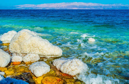 gedi: The Dead Sea is one of the most popular locations in Israel, its famous for the spa resorts, balneological qualities and unusual nature, Ein Gedi, Israel.