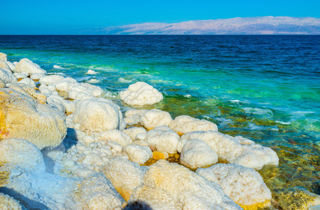 crystallization: The harsh environment of the Dead Sea due to its salinity, making it completely uninhabited, Ein Gedi, Israel. Stock Photo
