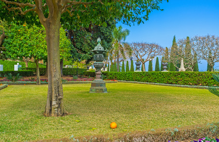 The bright orange on the grass under the tree in Bahai Garden, Haifa, Israel.