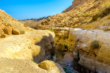 The mountain river in a narrow crevice in Ein Gedi Nature Reserve, Israel.