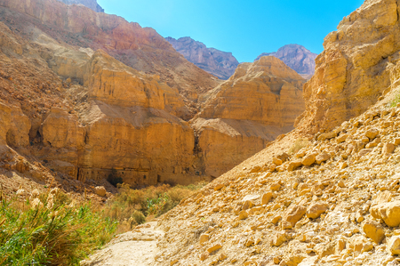 The Ein Gedi Nature Reserve is one of the best locations to visit from Jerusalem for the day tour, Israel.