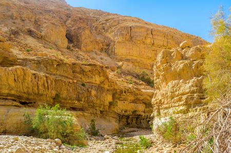judean desert: The steep slope of the rocky mountain in Ein Gedi oasis in Judean desert, Israel.