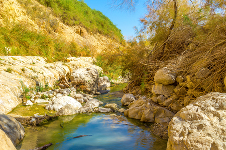 dea: The mirror surface of the mountain river in Ein Gedi Nature Reserve, Israel.