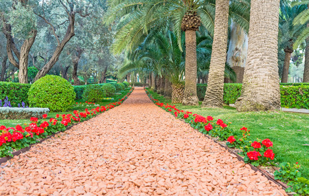 bordered: The footpath is bordered with red begonia flowers, Bahai Gardens, Haifa, Israel. Stock Photo