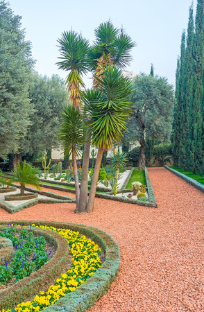 The Bahai Gardens boast impressive collection of plants, including flowers, palms, coniferous and succulents, Haifa, Israel.