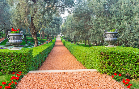 The red footpath in Bahai Garden, surrounded by trimmed bushes and vases with flowers, Haifa, Israel.