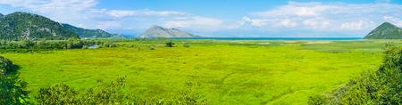 The wet meadows of Skadar Lake, the famous resort of Montenegro, Virpazar.