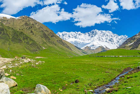 ushguli: The juicy green meadow at the foot of snowy Shkhara Mount in Ushguli, Upper Svaneti, Georgia. Stock Photo