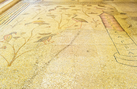 wetland: TABGHA, ISRAEL - FEBRUARY 22, 2016: The mosaic floor of the Multiplication Church, with the Nilometer and wetland birds and plants, on February 22 in Tabgha.