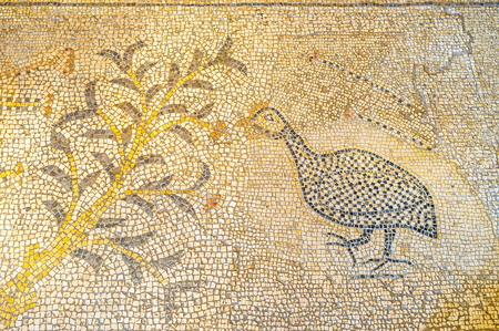 multiplicacion: TABGHA, ISRAEL - FEBRUARY 22, 2016: The mosaic on the floor of Multiplication Church with the guineafowl next to the bush, on February 22 in Tabgha.