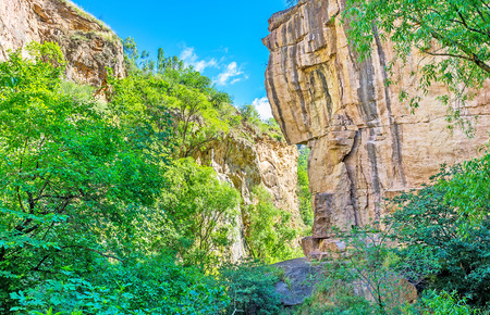 The narrow canyon of the hot spring with the steep slopes and shady trees, located next to Halidzor village, Syunik Province, Armenia.